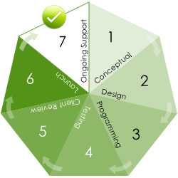 The web site designer process